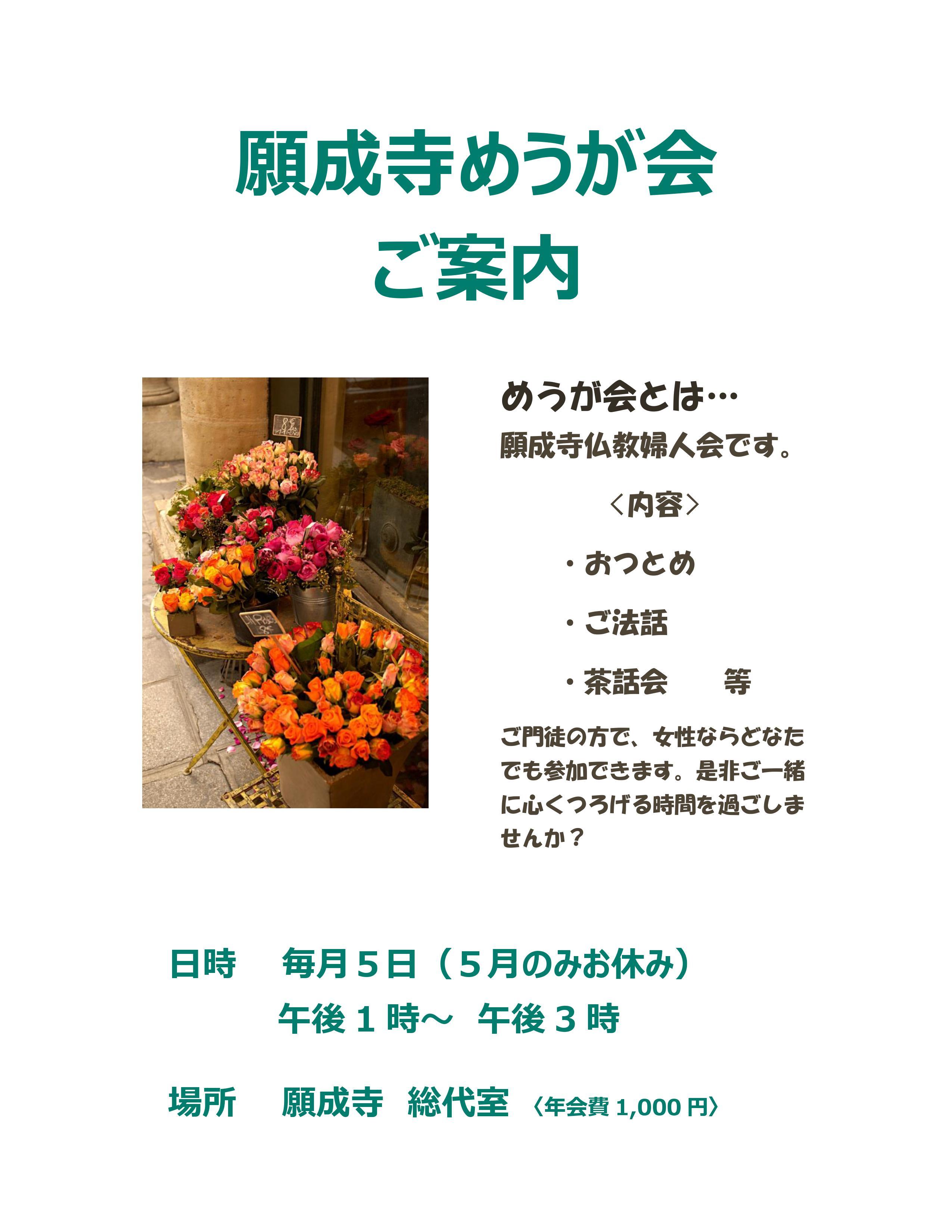 めうが会案内29.10